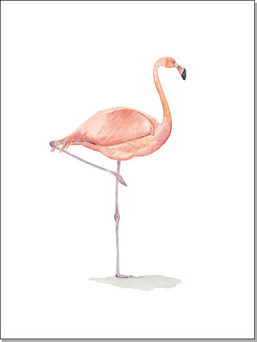 Flamingo 30x40 - Aquarell